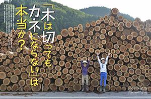 特集 「木は切ってもカネにならない」は本当か?